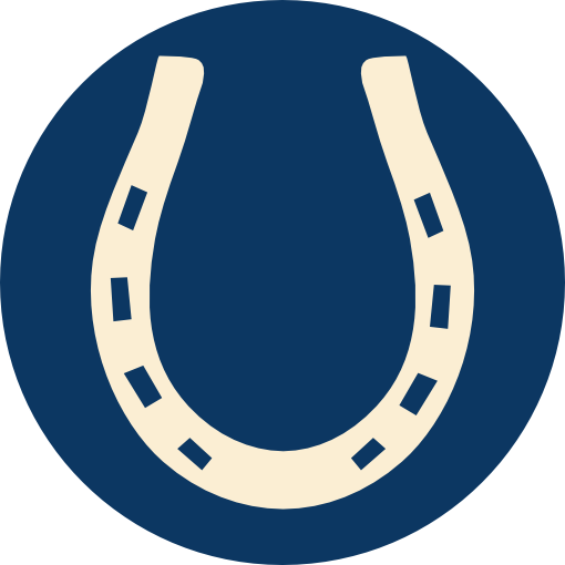 IO Rodeo Blog icon